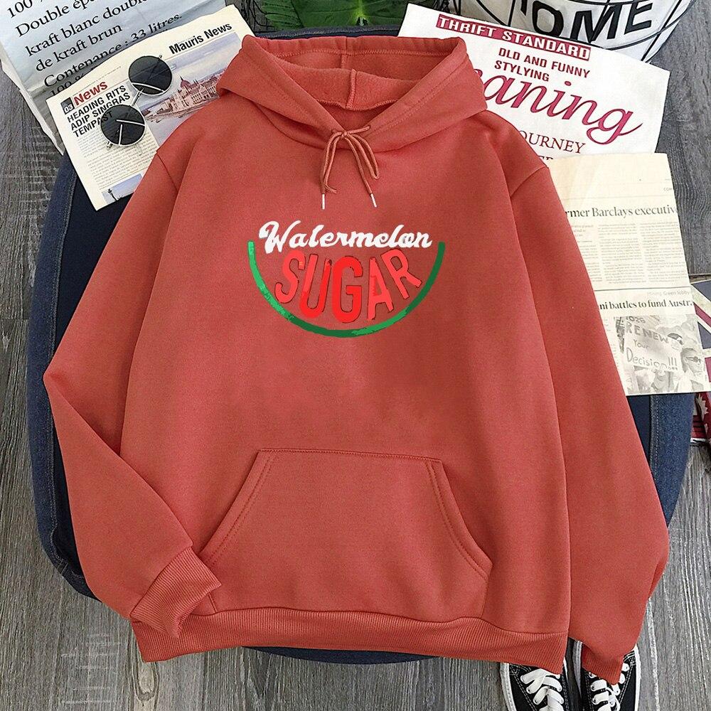 New Watermelon Sugar Hoodie